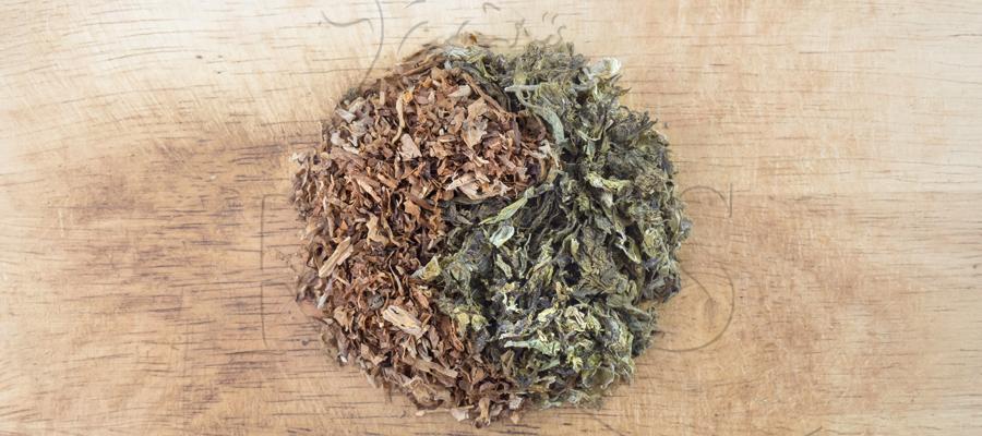 Verbrennung Rauchen Flamme verbrennen chemische Karzinogene Tabak