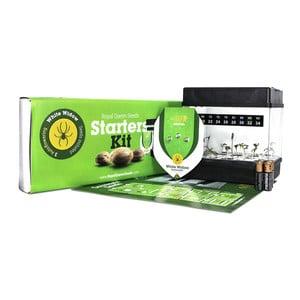 Starter Kit Autoflowering