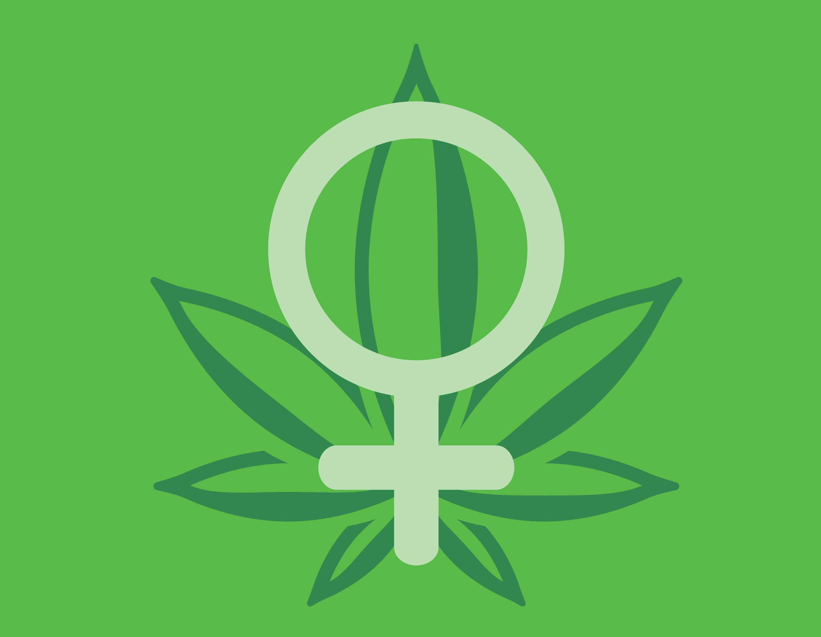 Frau Cannabis Marihuana Verbraucher schmeckt Vorlieben königlichen Königin Samen Lieblings