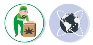 DIE REGELUNG cannabis