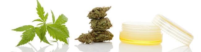 cannabis TOPISCHE PRODUKTE