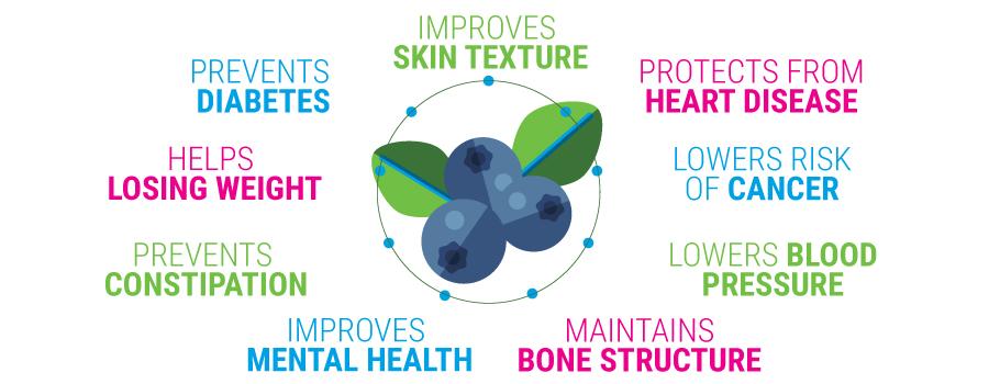 Blaubeer-Vorteile