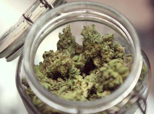 Aushärtung Cannabis in einem Einmachglas