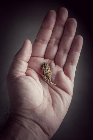 Microdosing cannabis verbrauchen sicher Vorteile