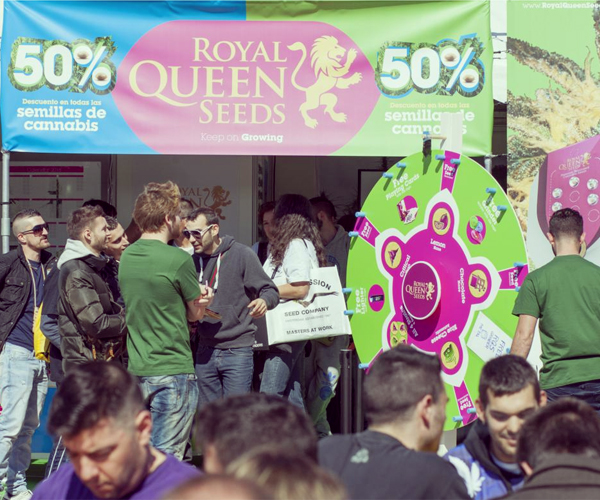 royal queen seeds stand barcelona spannabis
