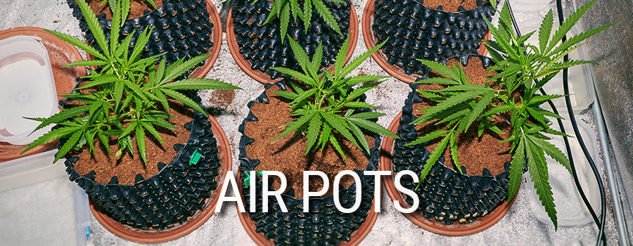 Air Pots Cannabis Anbau