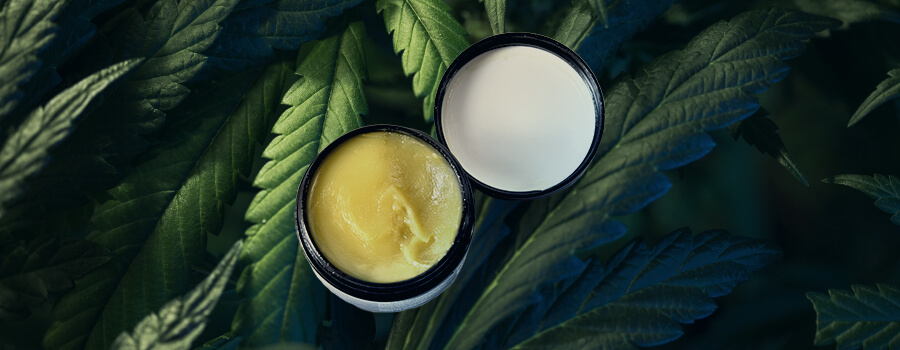 Lotion Cannabis