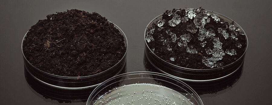 Polymers Absorbent Water Culture Cannabis