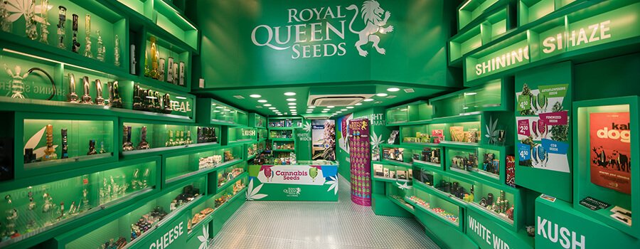 Cannabis-samen-geschäft Der Royal Queen Seeds In Barcelona