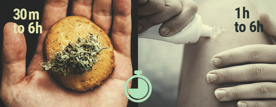 What Are the Fastest Ways to Feel the Effects of CBD?
