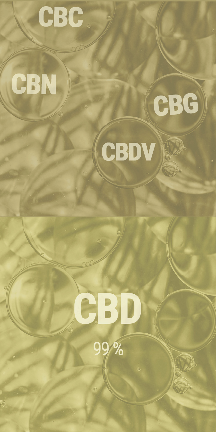 VOLLSPEKTRUM-CBD-ÖL VS. CBD-ISOLAT