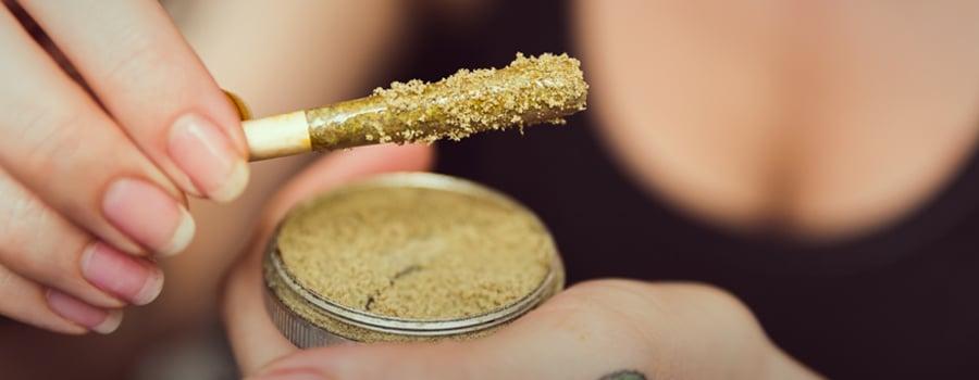 Gemeinsamer Marihuana-Chef-Cannabis