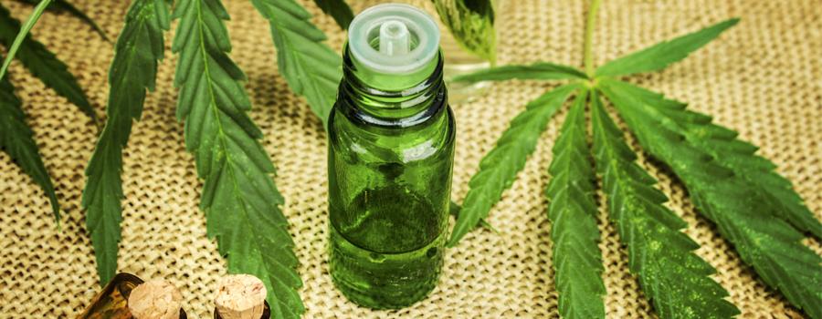 Cannabis Legalisierung Zusammensetzung Ölmarkt