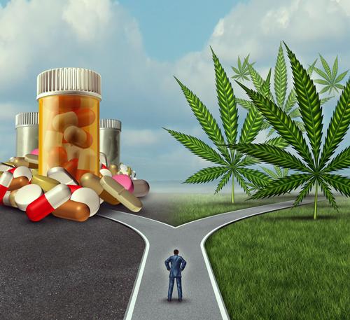 Migräne Cannabis Pille Kopfschmerzen Behandlung