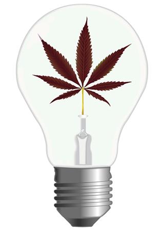 Kosten Cannabisanbaus Grow Room Unter Kontrolle