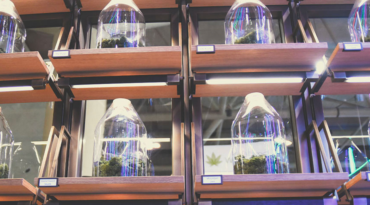 Bradley Poulos on the Present and Future of Cannabis Business