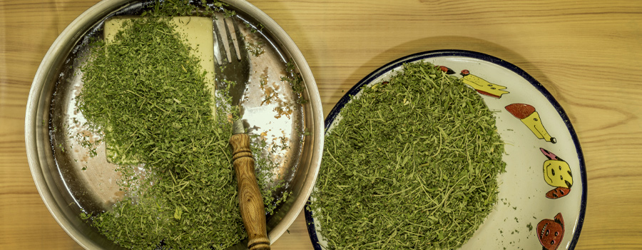 Cannabutter Rezept Cannabis Tee