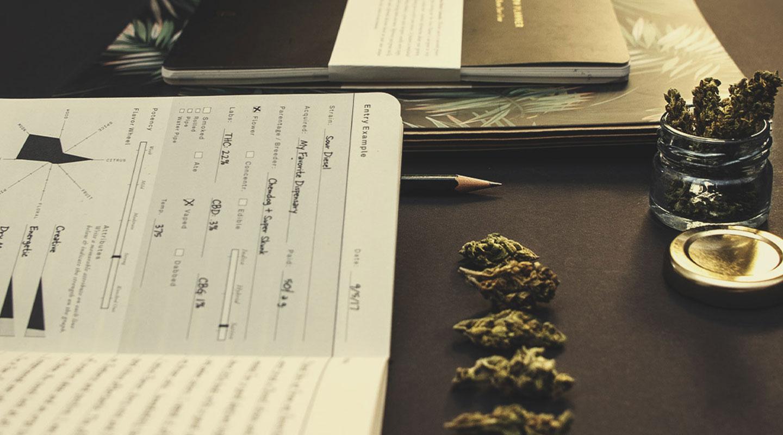 Führt Marihuana dazu, dass Du die Kontrolle verlierst? Oder bist Du Dir bewusst, was um Dich herum passiert?