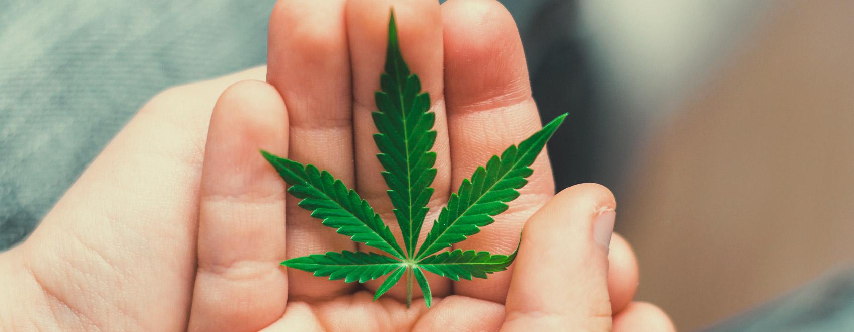 Wie können wir unseren Kindern das Thema Cannabis näher bringen?