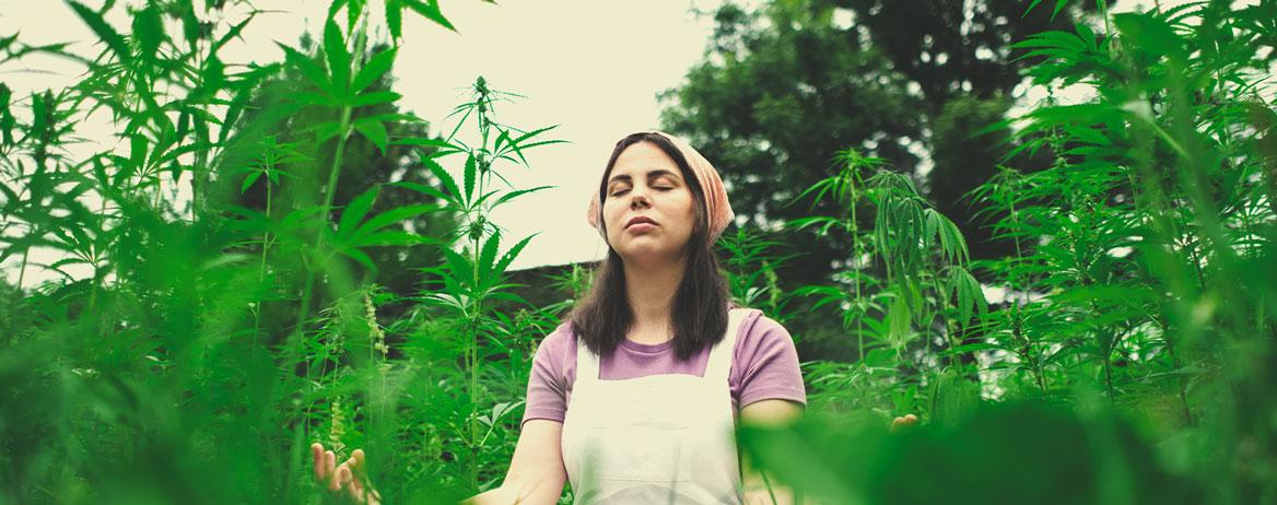 Kannst Du uns eine Übung nennen, die wir verwenden könnten, um mit Cannabis zu meditieren?