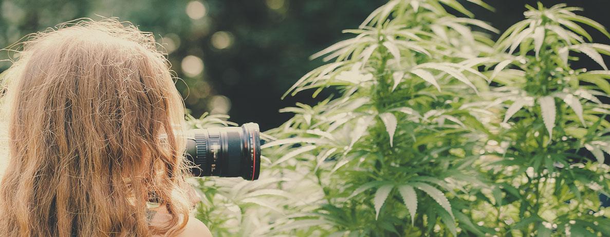 Welche Art von Jobs kann man als Cannabis-Fotograf erwarten (z. B. Immobilien, für Cannabis-Apotheken, Cannabis-Fotojournalismus…)?