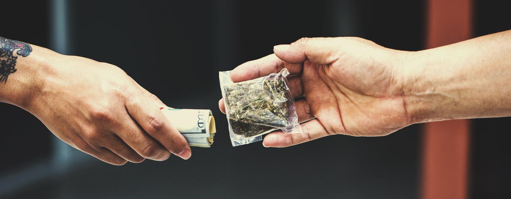 Interessiert es die Menschen, wo das Cannabis herkommt, das sie konsumieren?