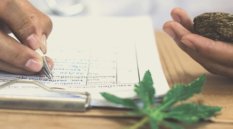 Die Wichtigkeit des THC-Gehalts für Züchter und Konsumenten