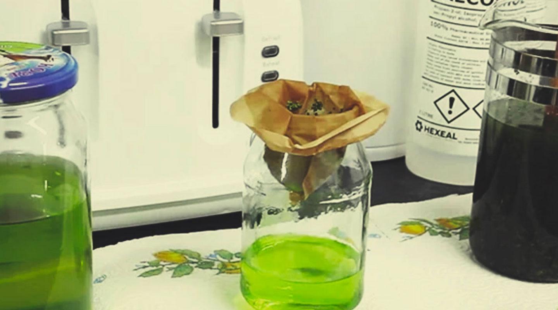 Wie man Rick-Simpson-Öl herstellt