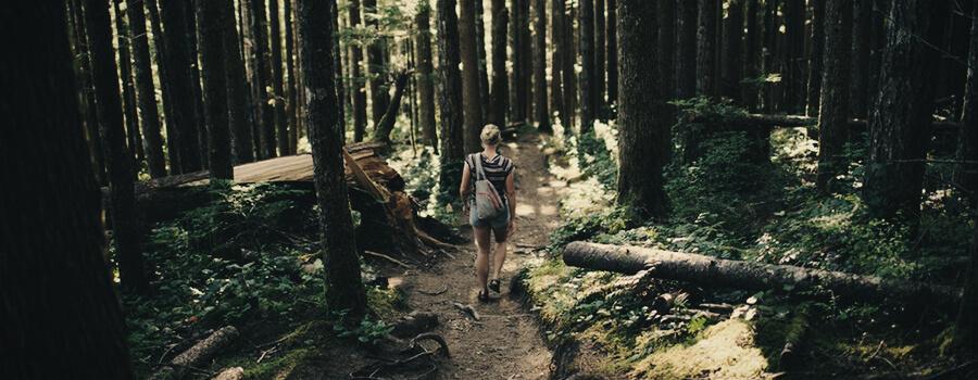 Wandern von Cannabis-Sport