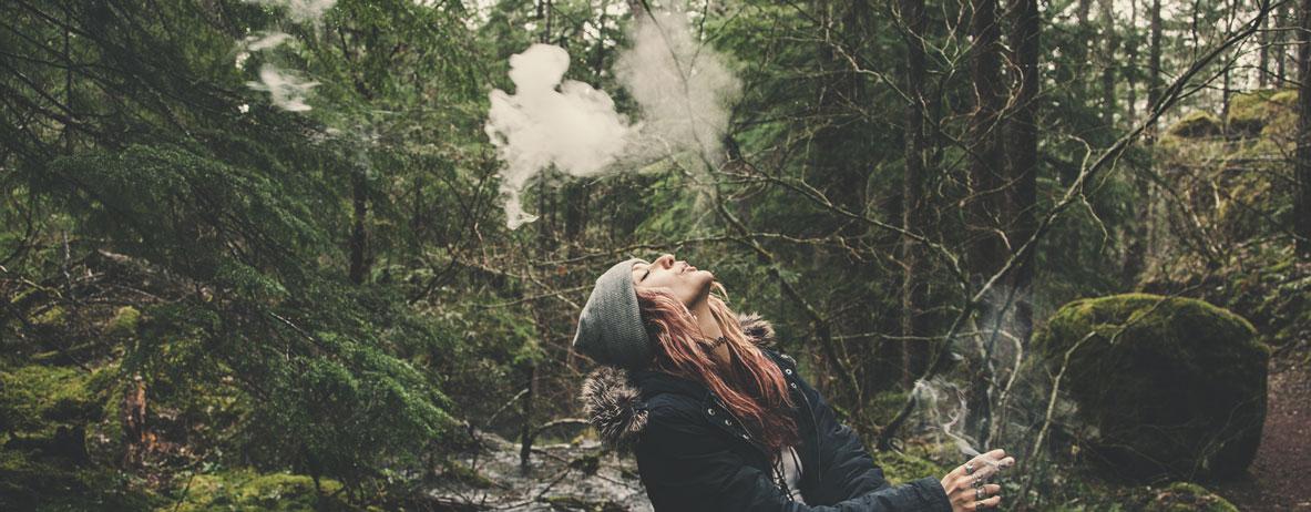 Die Eigenschaften von Kush-Cannabis