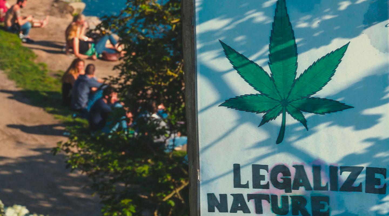 Die komplexe Rechtslage von Cannabis