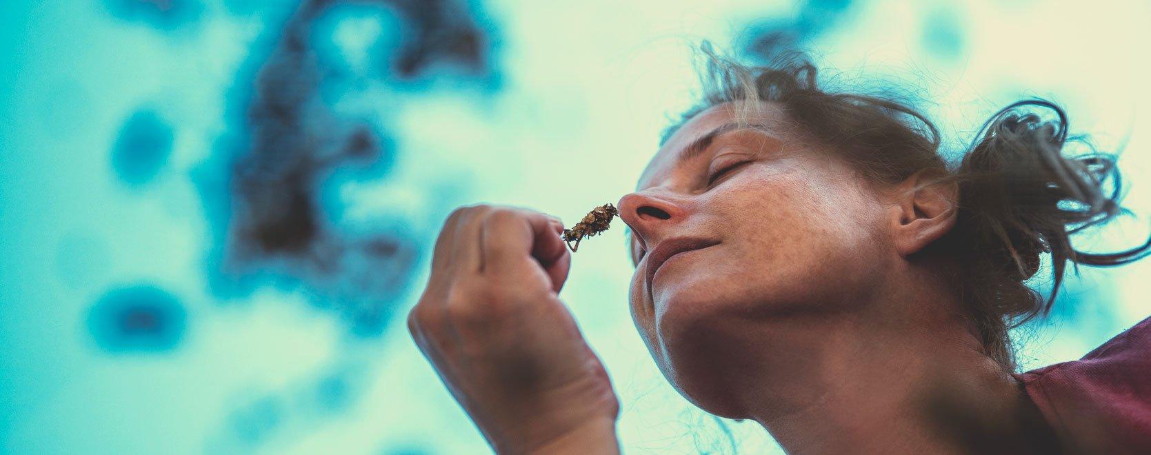 Kann Cannabis Menschen dabei helfen, mit Ängsten, Stress, Gewichtsabnahme, Alkoholentzug und Ähnlichem umzugehen?