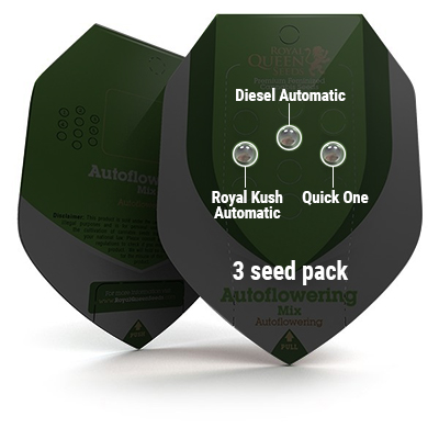 3 Seed RQS Autoflowering Mix
