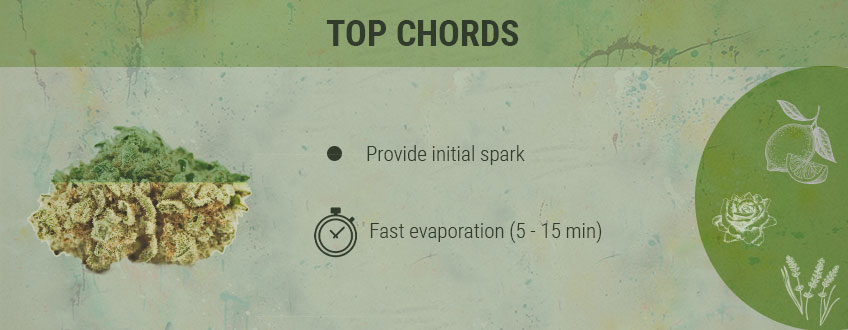 Top Chords Cannabis