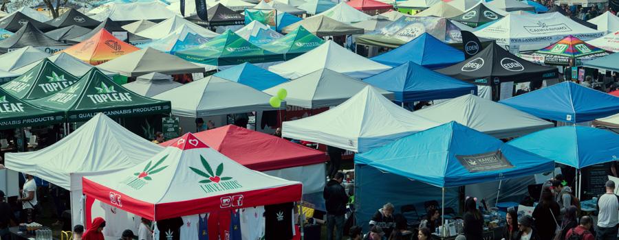 Norml Legalisierung Cannabis