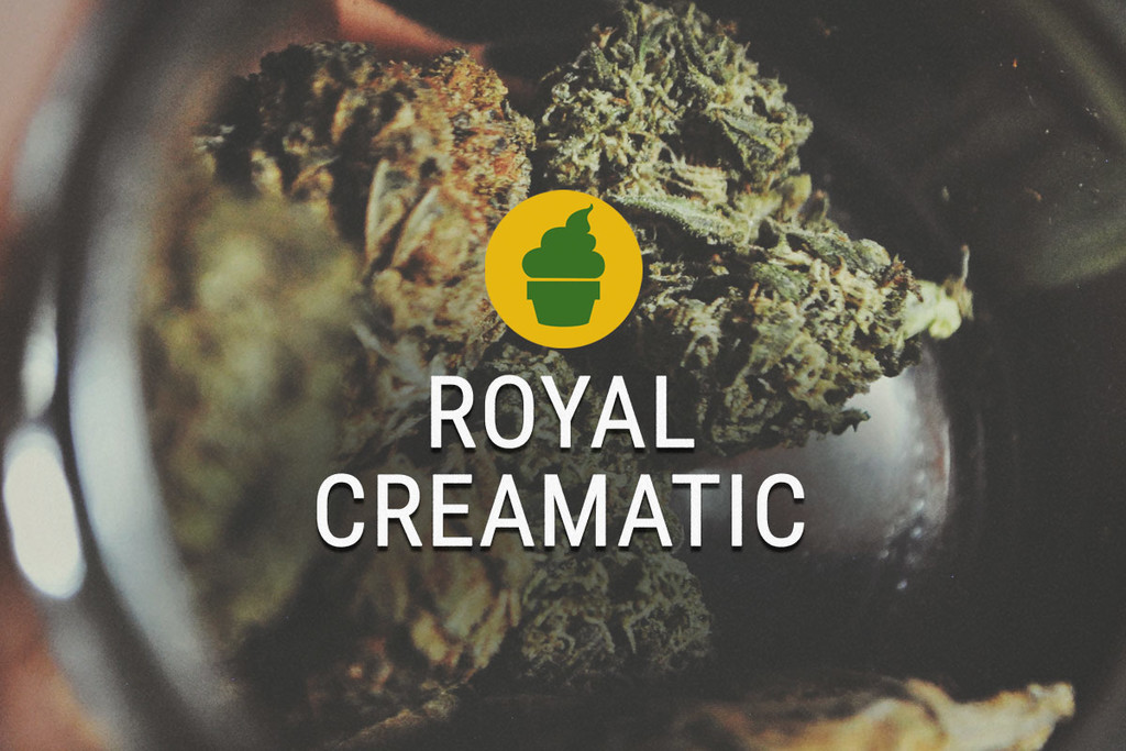 Royal Creamatic Rauch Bericht