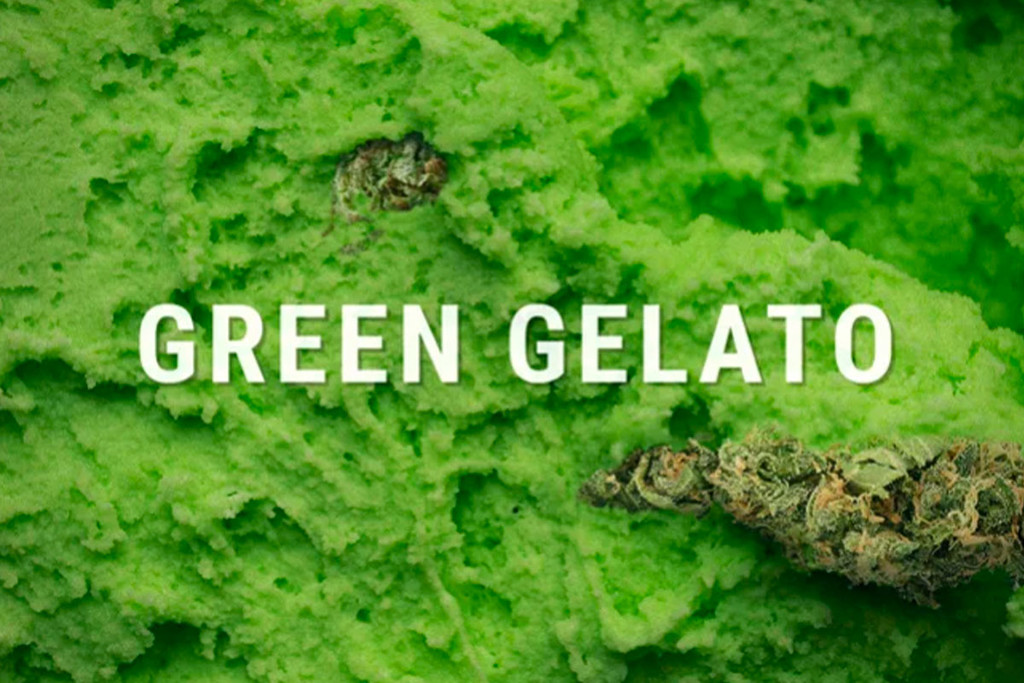 Green Gelato von Royal Queen Seeds
