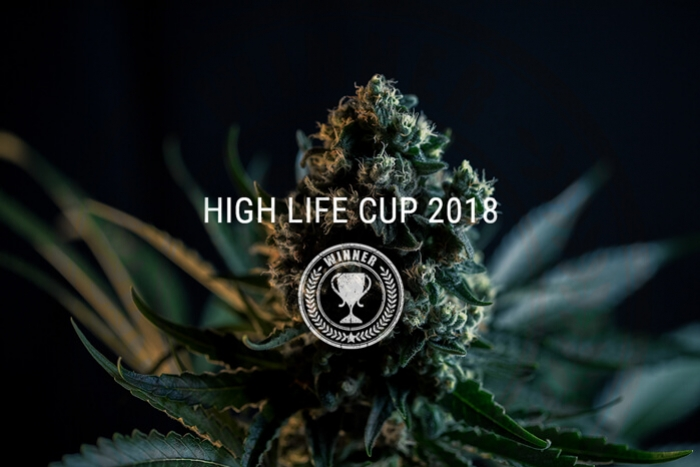 Royal Queen Seeds räumt beim Highlife Cup 2018 ab